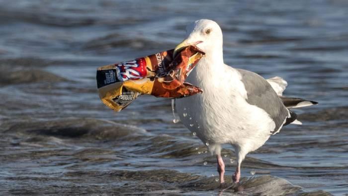 آلودگی دریاها توسط پلاستیک